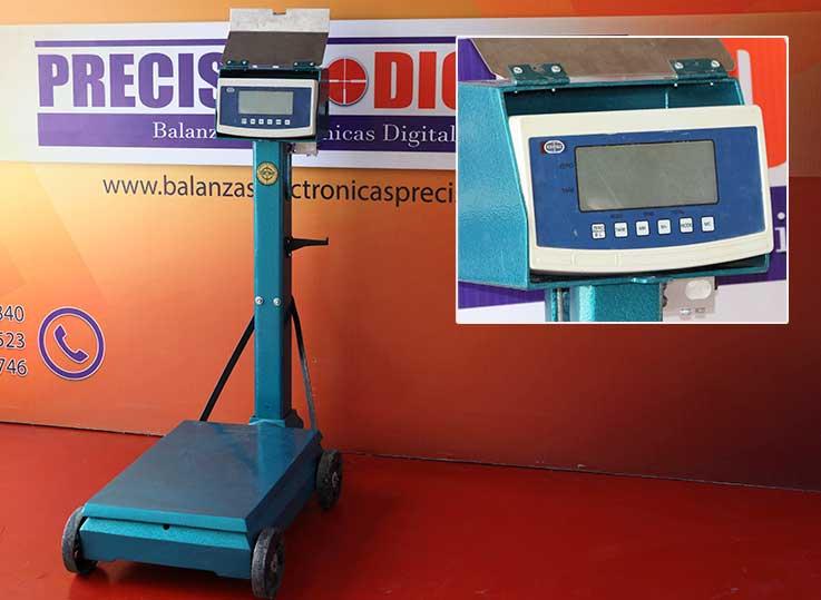 Balanza Electromecánica Saguita 2P de 500 kg