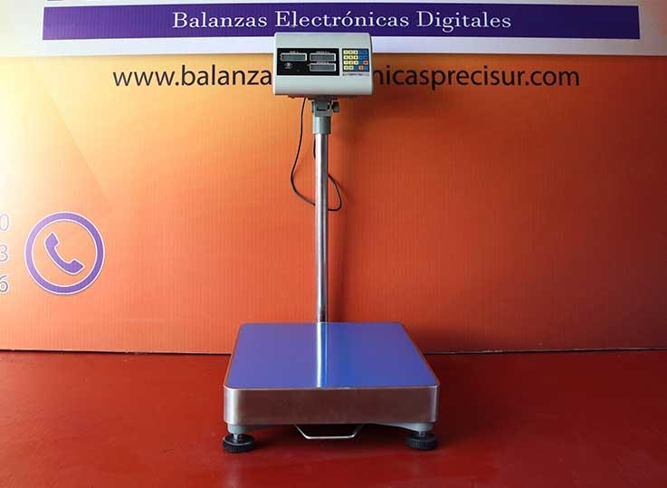 Balanza Electrónica de Plataforma Excell Lap de 300 kg