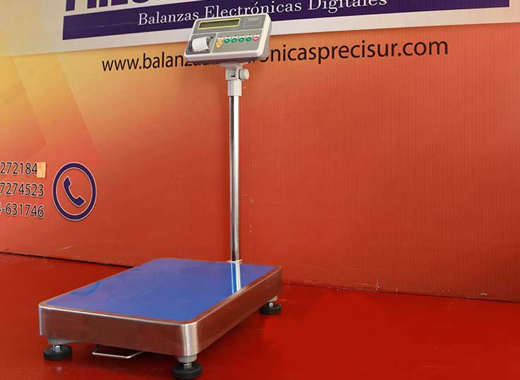 Balanza de Plataforma Etiquetadora T-Scale T2200p de 300 kg