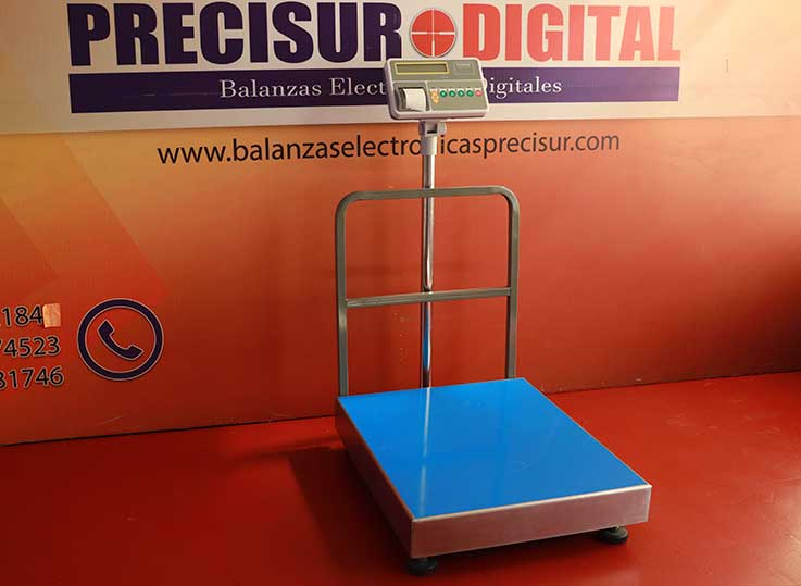 Balanza de Plataforma Etiquetadora T-Scale T2200p de 600 kg